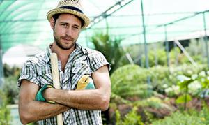 Exploitants agricoles : l'arrêt maladie désormais indemnisé !