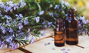 L'aromathérapie, la science aromatique des plantes